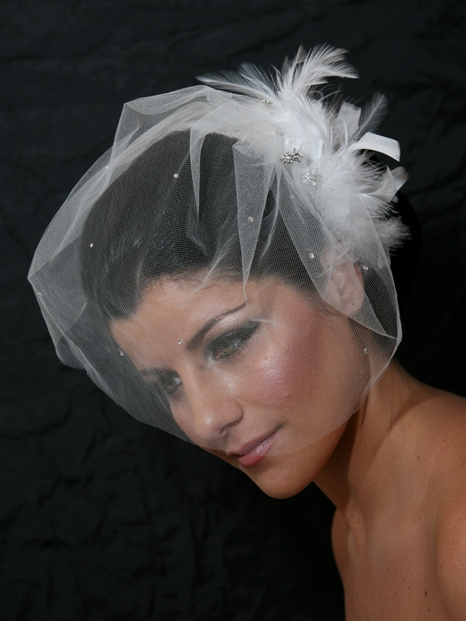 Veil with Feather Fluff